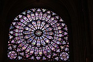 Notre Dame Stained Glass #3